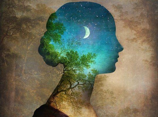 Integració de somnis